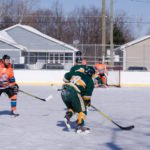 Help raise money to put a roof over Lions Field Ice Rink.