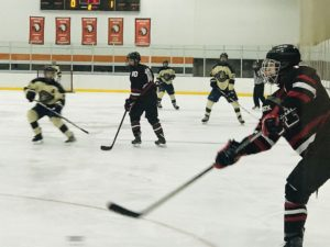 The Marquette Redmen Hockey team takes on the Berkley Bears.