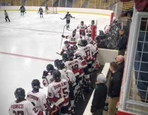 The Marquette Redmen celebrate after one of their five goals on Friday night against the West Ottawa Panthers on 97.5 GTO-FM